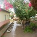 EFA Jaguaré - A Chuva cai sobre a Natureza e a Planta Cresce