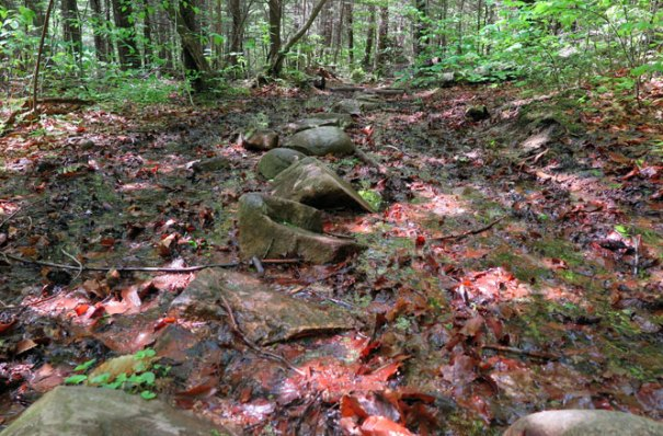 Mt. Morgan Trail Mud