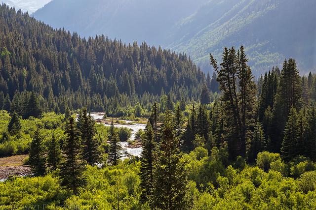 Mineral Creek