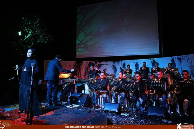 Salamander Big Band Mid Year Concert 2017 (3)