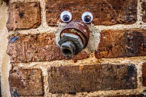 Googly-Eye Bombing Downtown Greenville-96