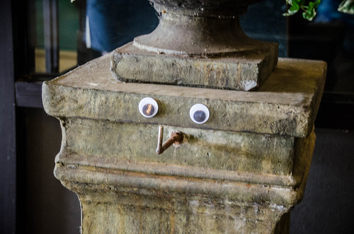 Googly-Eye Bombing Downtown Greenville-63