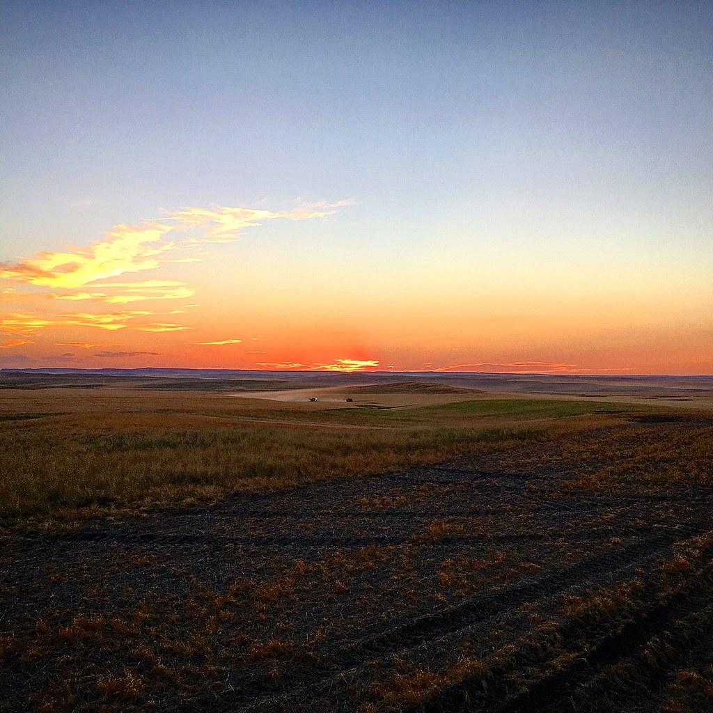 High Plains Harvesting 2017 (James)