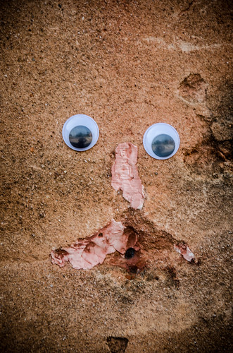 Googly-Eye Bombing Downtown Greenville-49