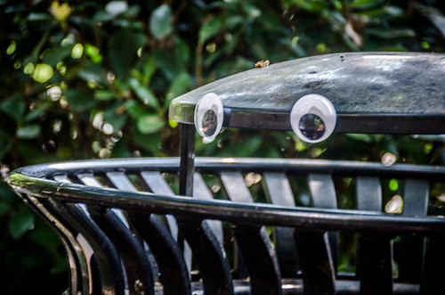 Googly-Eye Bombing Downtown Greenville-79