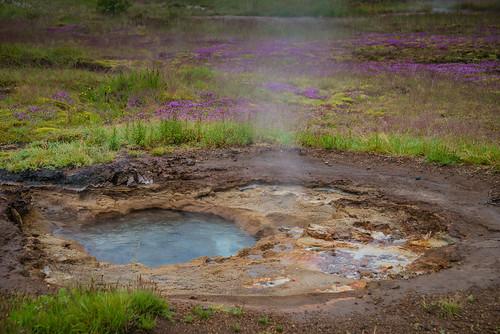 Icelandic thermal activity