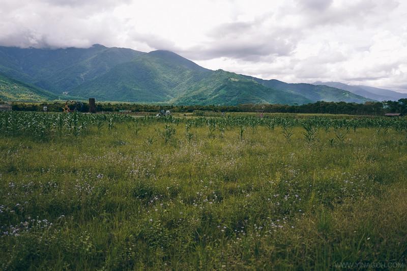 Hualien-Taroko-East-Coast-44