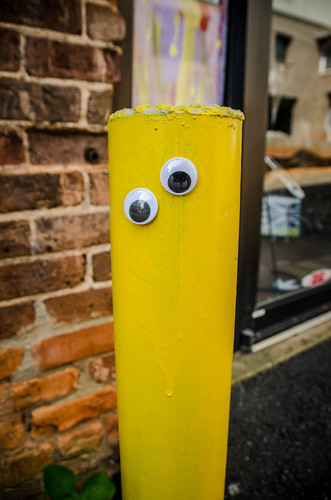 Googly-Eye Bombing Downtown Greenville-21