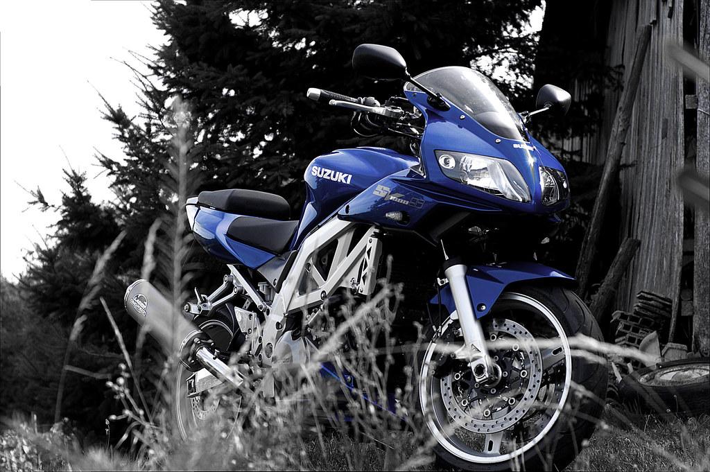 Suzuki Drreview