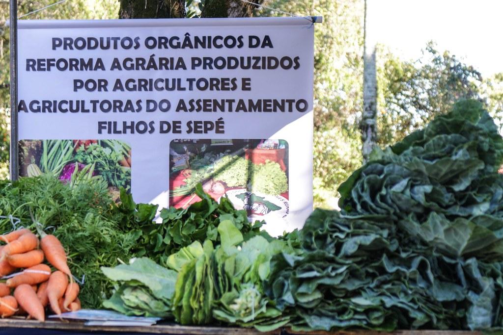 Resultado de imagem para mst produtos organicos
