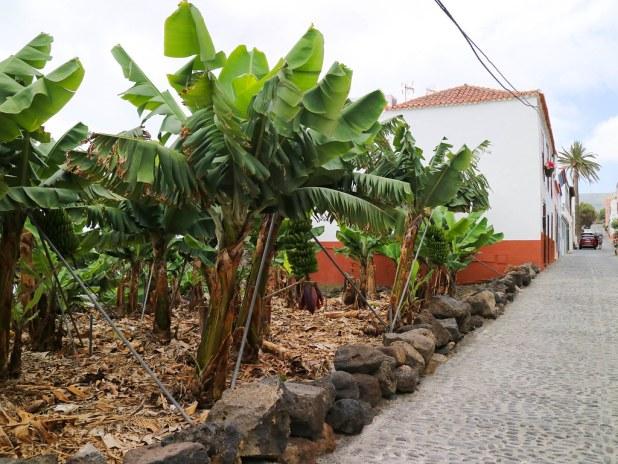 Villa de San Andres