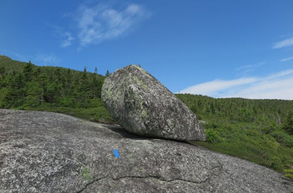 Berry Picker's Trail Erratic