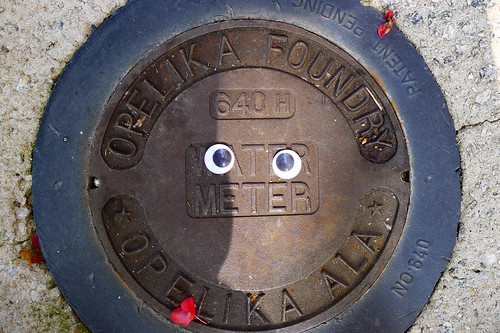 Googly-Eye Bombing Downtown Greenville-110