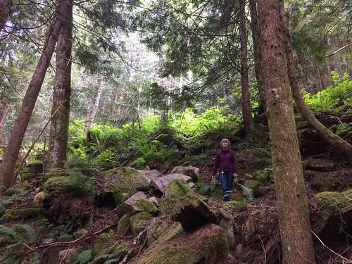 Linda on the trail