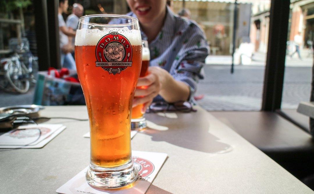 Domus Brewery, Lovanio