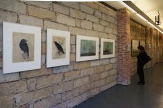 Ausstellung APK