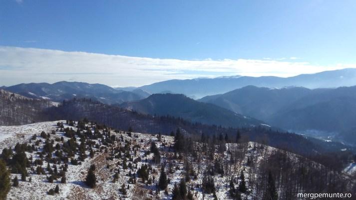 culmi din muntii lotrului si creasta muntilor capatanii in plan indepartat