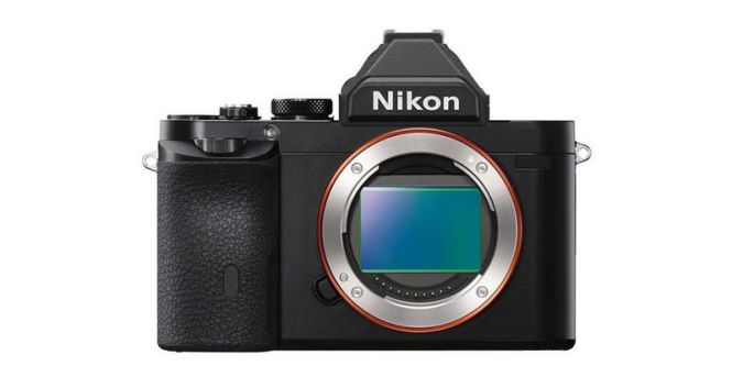 nikon _photo_1