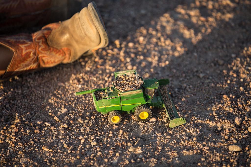 High Plains Harvesting (2017-Laura)