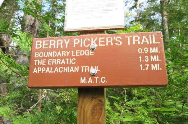 Saddleback Berry Picker's Trail-Sign
