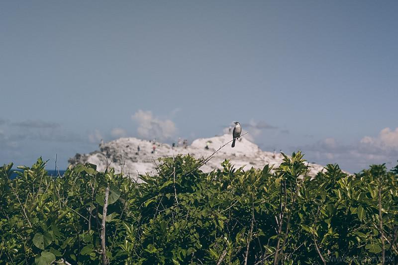 Hualien-Taroko-East-Coast-48