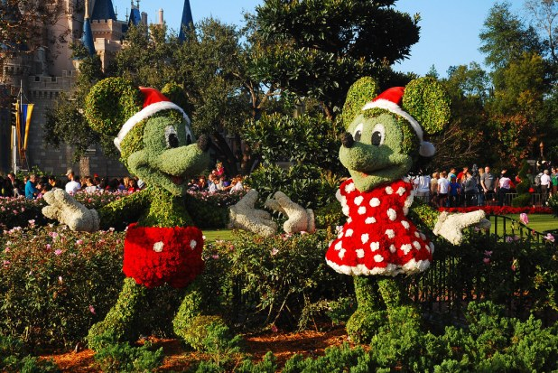 5 días en Disney
