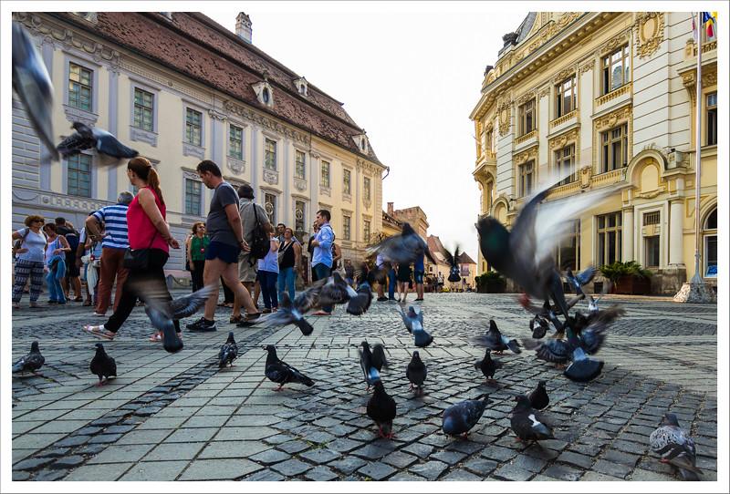 Sibiu-137