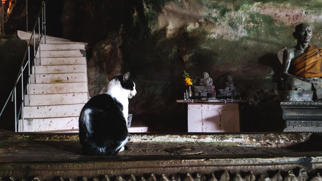 Phuket | Monkey Cave Temple (Wat Tham Suwan Khuha)