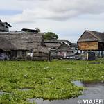 Viajefilos en la Amazonia, Peru 192