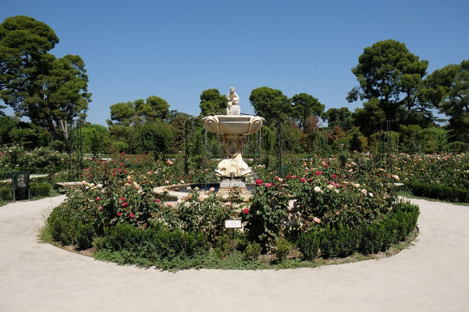 Rose Garden inside Retiro Park
