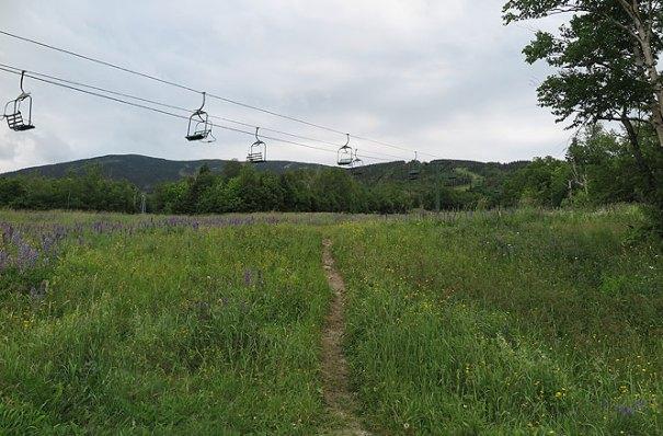 The Beginning of the Saddleback hike via the Saddleback Maine ski resort
