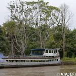 Viajefilos en la Amazonia, Peru 013