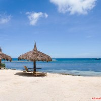 Bluewater Panglao Beach Resort: A Luxurious Escape in Bohol