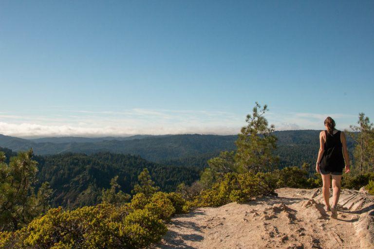 08.13. Big Basin State Park