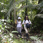 Viajefilos en la Amazonia, Peru 039