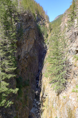 Gorge Creek in Northern Cascades National Park-007