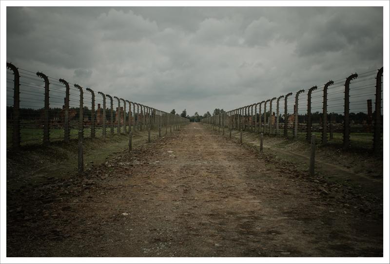 Auschwitz-68
