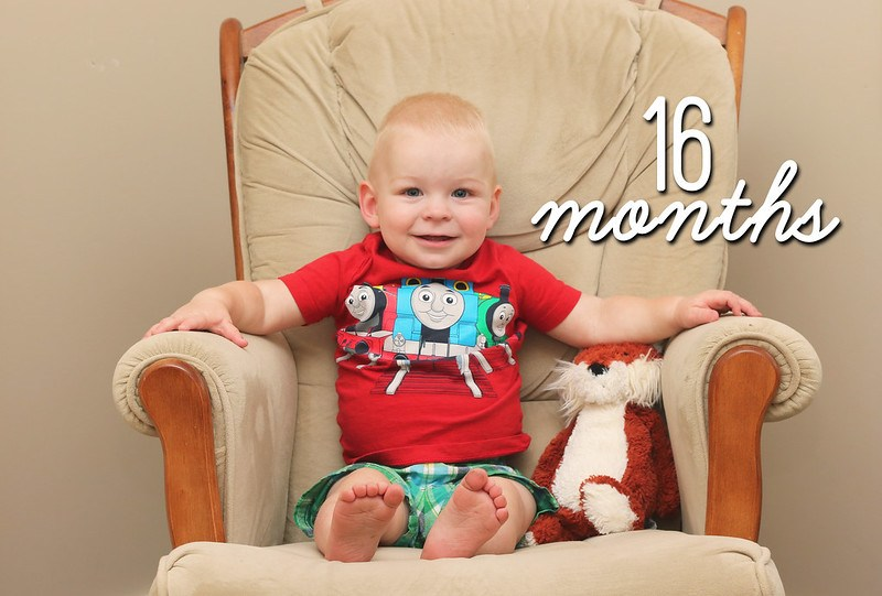 Jonathan is 16 Months Old!