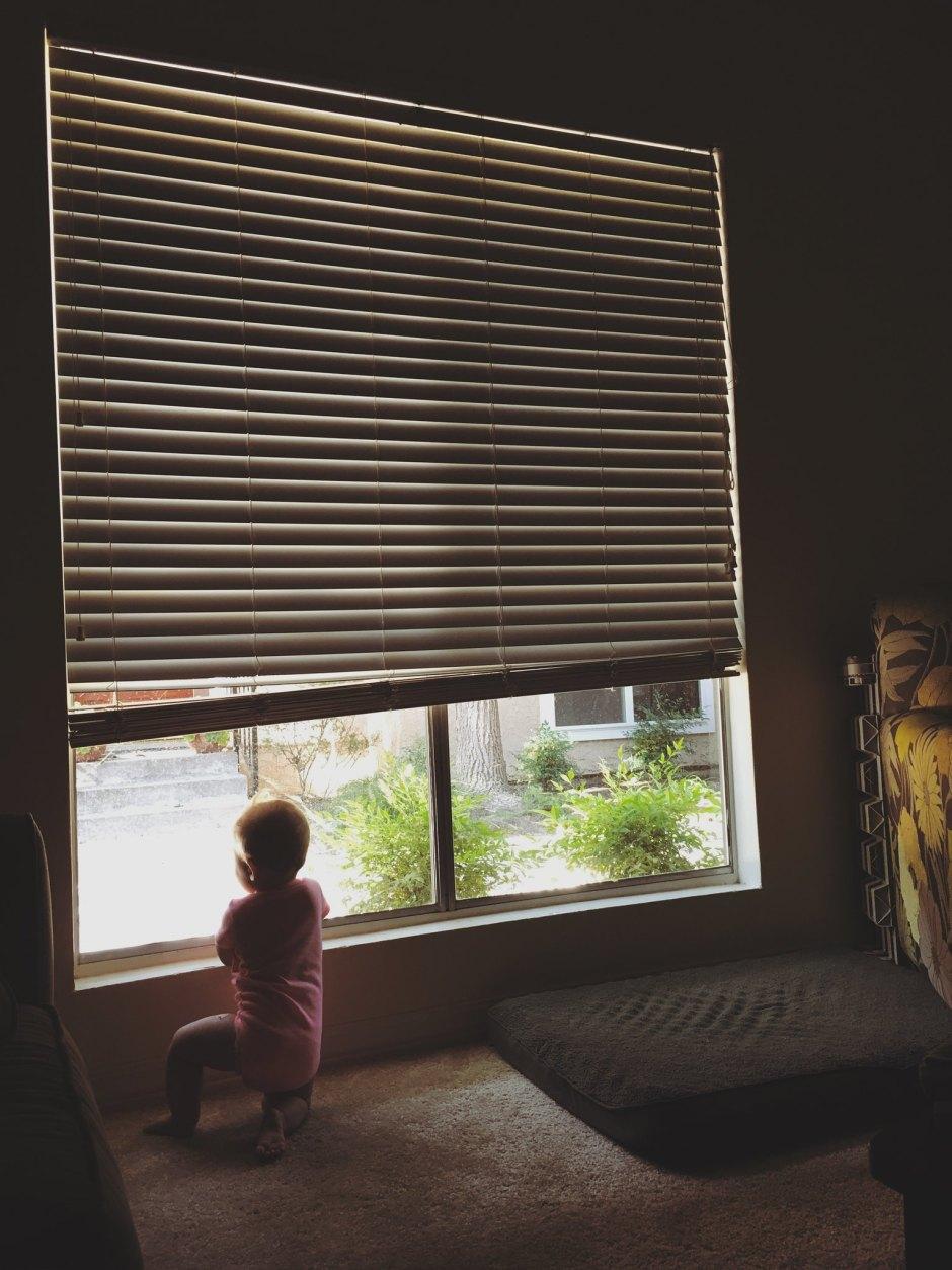 window