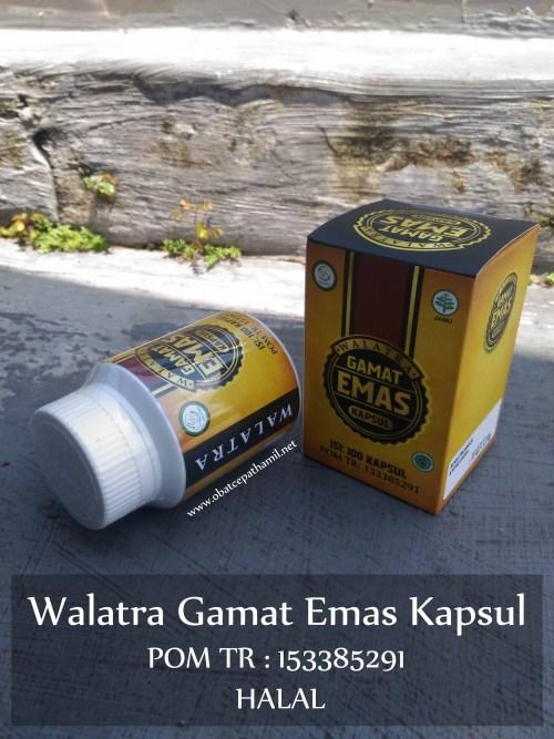 Khasiat dan Manfaat Herbal Gamat Emas Kapsul