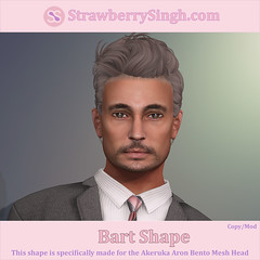 StrawberrySingh.com Bart Shape