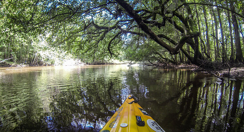 Lynches River with Lowcountry Unfiltered-61