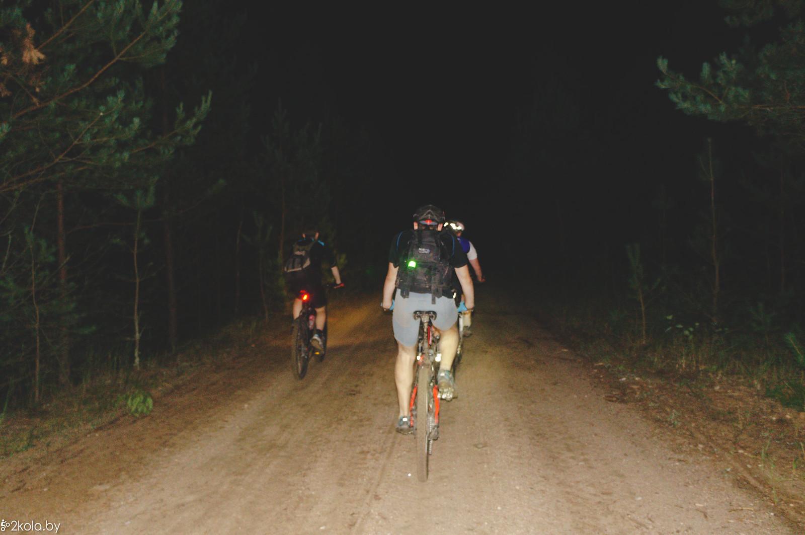 По ночному лесу