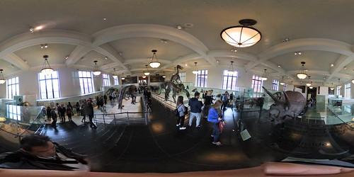 Hall of Ornithischian Dinosaurs.