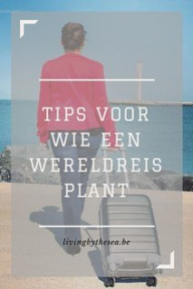 tips wereldreis