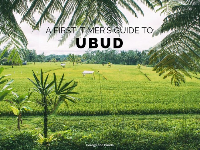 A First-Timer's Guide to Ubud (A Perogy and Panda Bali Destination Guide)