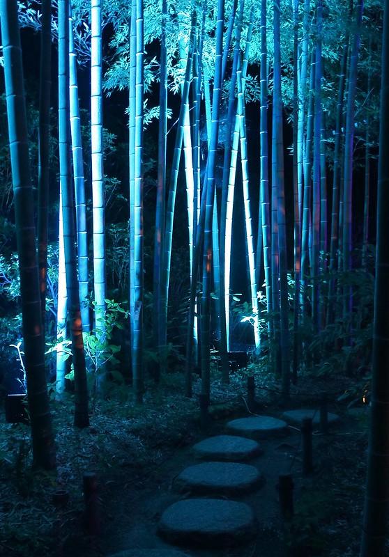 Hasedera Kmaakura Summer Night Illuminations 2017