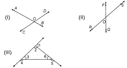 ncert-exemplar-problems-class-7-maths-lines-and-angles-74