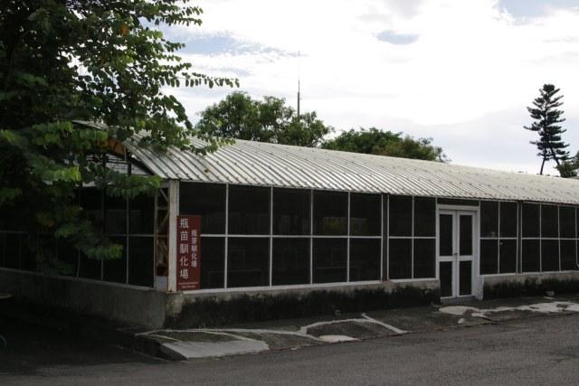 台灣香蕉科技園區 (7)