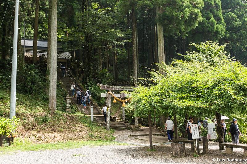 Estanque-Monet-Gifu-3